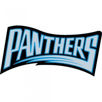 Carolina Panthers Script Logo  Light Iron-on Stickers (Heat Transfers)