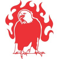 Eagle Flames light-colored apparel iron on stickers version 6