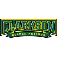 Clarkson Golden Knights 2004-Pres Wordmark Logo Light Iron-on Stickers (Heat Transfers)