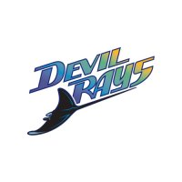 Tampa Bay Rays Script Logo  Light Iron-on Stickers (Heat Transfers)