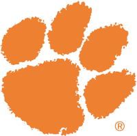 Clemson Tigers 1976-Pres Primary Logo Light Iron-on Stickers (Heat Transfers)