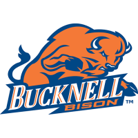 Bucknell Bison 2002-Pres Primary Log Light Iron-on Stickers (Heat Transfers)