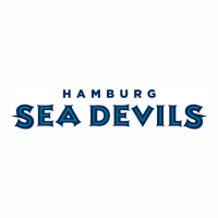 Hamburg Sea Devils 2005-2007 Wordmark Logo1 Light Iron-on Stickers (Heat Transfers)