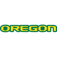 1999-Pres Oregon Ducks Wordmark Logo Light Iron-on Stickers (Heat Transfers)