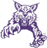 Abilene Christian Wildcats 1997-2012 Partial Logo Light Iron-on Stickers (Heat Transfers)