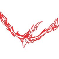 Eagle Flames light-colored apparel iron on stickers version 13