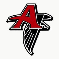 Atlanta Falcons Alternate Logo  Light Iron-on Stickers (Heat Transfers) version 1