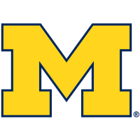 2012-Pres Michigan Wolverines Primary Logo Light Iron-on Stickers (Heat Transfers)