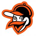 Baltimore Orioles Alternate Logo  Light Iron-on Stickers (Heat Transfers)