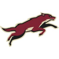 Phoenix Coyotes Alternate Logo  Light Iron-on Stickers (Heat Transfers) version 1
