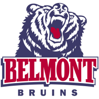 Belmont Bruins 2003-Pres Primary Logo Light Iron-on Stickers (Heat Transfers)