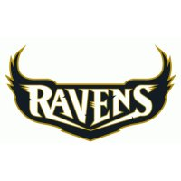 Baltimore Ravens Script Logo  Light Iron-on Stickers (Heat Transfers) version 4