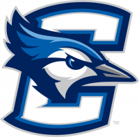 Creighton Bluejays 2013-Pres Primary Logo Light Iron-on Stickers (Heat Transfers)