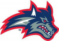 2003-2007 Stony Brook Seawolves Alternate Logo Light Iron-on Stickers (Heat Transfers)