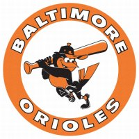 Baltimore Orioles Primary Logo  Light Iron-on Stickers (Heat Transfers)