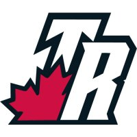 Toronto Raptors Alternate Logo  Light Iron-on Stickers (Heat Transfers)