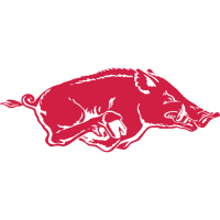 Arkansas Razorbacks 1967-2000 Primary Logo Light Iron-on Stickers (Heat Transfers)