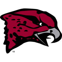 2007-Pres Maryland-Eastern Shore Hawks Primary Logo Light Iron-on Stickers (Heat Transfers)
