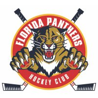 Florida Panthers Alternate Logo  Light Iron-on Stickers (Heat Transfers) version 3