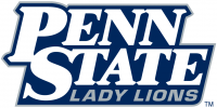 Penn State Nittany Lions 2001-2004 Wordmark Logo Light Iron-on Stickers (Heat Transfers)
