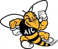 AIC Yellow Jackets 2009-Pres Primary Logo Light Iron-on Stickers (Heat Transfers)