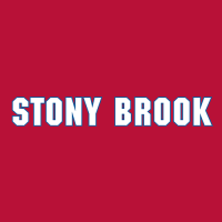 2008-Pres Stony Brook Seawolves Wordmark Logo Light Iron-on Stickers (Heat Transfers) Light Iron-on Stickers (Heat Transfers)