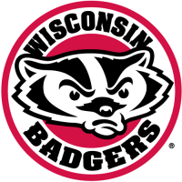 2002-Pres Wisconsin Badgers Alternate Logo Light Iron-on Stickers (Heat Transfers)