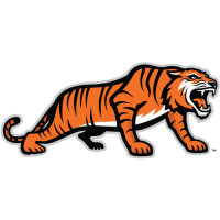 RIT Tigers 2004-Pres Alternate Logo2 Light Iron-on Stickers (Heat Transfers)