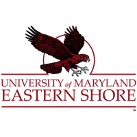 2007-Pres Maryland-Eastern Shore Hawks Alternate Logo Light Iron-on Stickers (Heat Transfers)