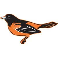 Baltimore Orioles Alternate Logo  Light Iron-on Stickers (Heat Transfers) version 5