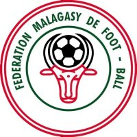 Madagascar Football Confederation Light Iron-on Stickers (Heat Transfers)