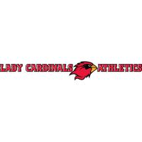 2010-Pres Lamar Cardinals Wordmark Logo Light Iron-on Stickers (Heat Transfers)