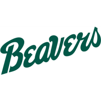 Bemidji State Beavers 2004-Pres Wordmark Logo1 Light Iron-on Stickers (Heat Transfers)