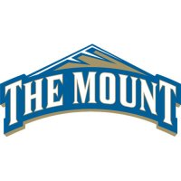 2007-Pres Mount St. Marys Mountaineers Primary Logo Light Iron-on Stickers (Heat Transfers)