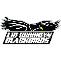 2008-Pres LIU-Brooklyn Blackbirds Primary Logo Light Iron-on Stickers (Heat Transfers)