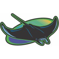 Tampa Bay Rays Cap Logo  Light Iron-on Stickers (Heat Transfers)