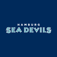 Hamburg Sea Devils 2005-2007 Wordmark Logo Light Iron-on Stickers (Heat Transfers)