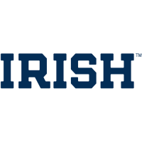 0-Pres Notre Dame Fighting Irish Wordmark Logo Light Iron-on Stickers (Heat Transfers)
