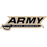 Army Black Knights 2000-Pres Wordmark Logo Light Iron-on Stickers (Heat Transfers)
