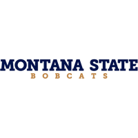 2013-Pres Montana State Bobcats Wordmark Logo Light Iron-on Stickers (Heat Transfers)