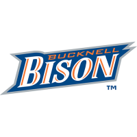 Bucknell Bison 2002-Pres Wordmark Logo Light Iron-on Stickers (Heat Transfers)