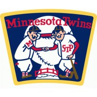 Minnesota Twins Alternate Logo  Light Iron-on Stickers (Heat Transfers)