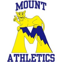 1995-2006 Mount St. Marys Mountaineers Primary Logo Light Iron-on Stickers (Heat Transfers)