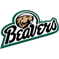 Bemidji State Beavers 2004-Pres Alternate Logo Light Iron-on Stickers (Heat Transfers)
