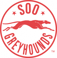 1985 86-1994 95 Sault Ste. Marie Greyhounds Alternate Logo Light Iron-on Stickers (Heat Transfers)