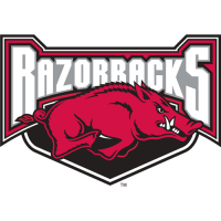 Arkansas Razorbacks 2001-2008 Alternate Logo3 Light Iron-on Stickers (Heat Transfers)