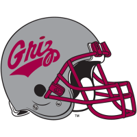 1996-Pres Montana Grizzlies Helmet Logo Light Iron-on Stickers (Heat Transfers)