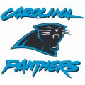 Carolina Panthers Alternate Logo  Light Iron-on Stickers (Heat Transfers)