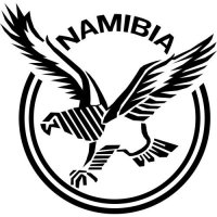 Namibia Football Confederation Light Iron-on Stickers (Heat Transfers)