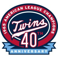 Minnesota Twins Anniversary Logo  Light Iron-on Stickers (Heat Transfers)